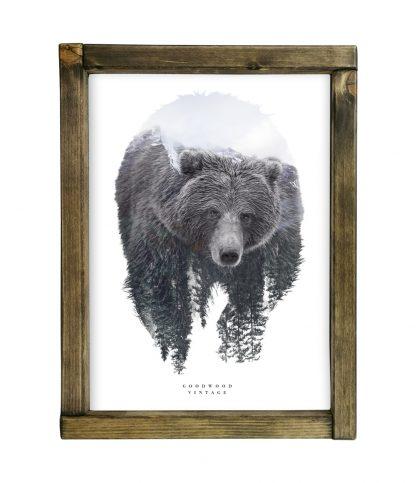 goodwood vintage double exposure grizzly medve tolgy keret