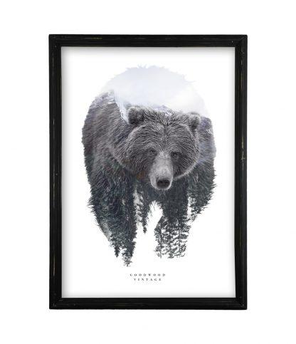 goodwood vintage double exposure grizzly medve vintage fekete keret
